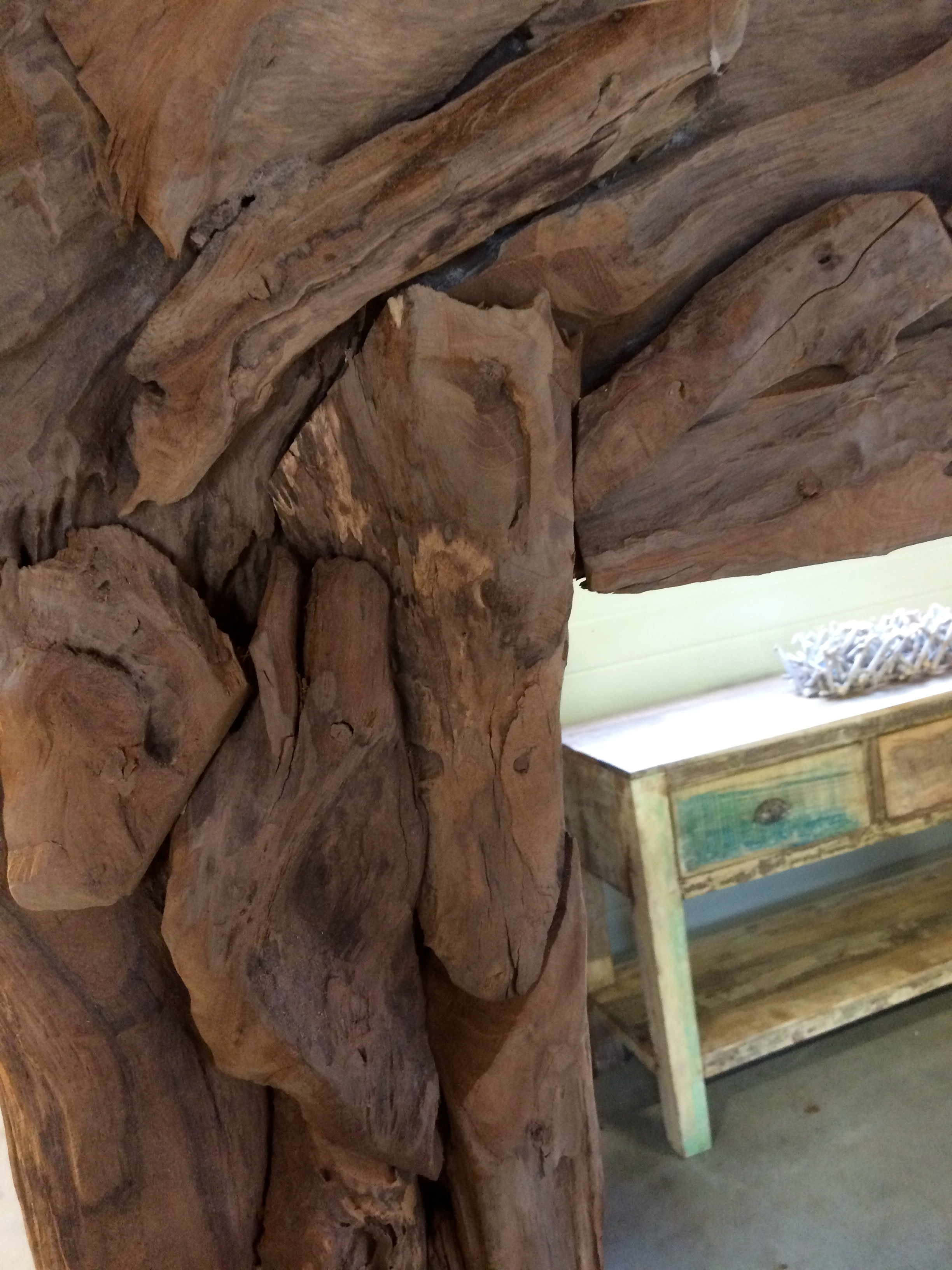 Spiegels drijfhout    root   Polder TEAK